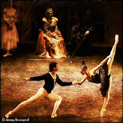 Russianimperialballetswanlake03