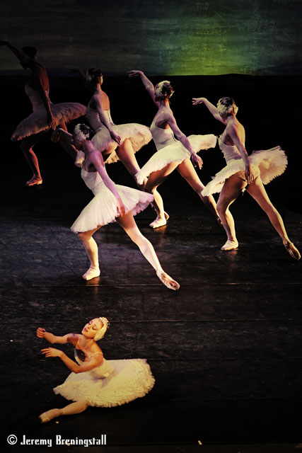 Russianimperialballetswanlake05