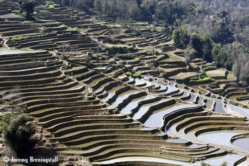 Yuanyangriceterraces07
