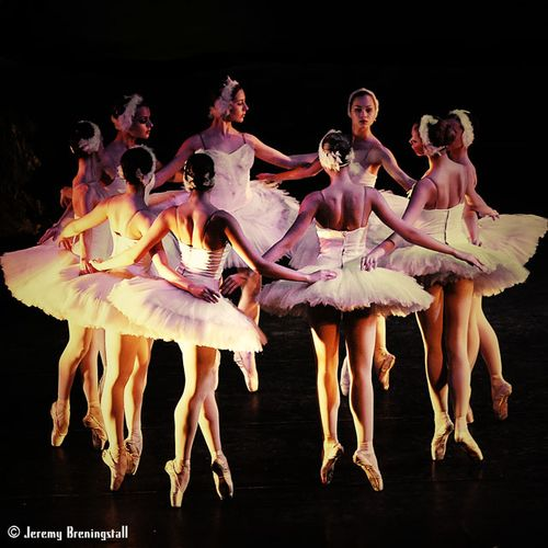 Russianimperialballetswanlake01