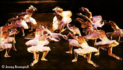 Russianimperialballetswanlake04