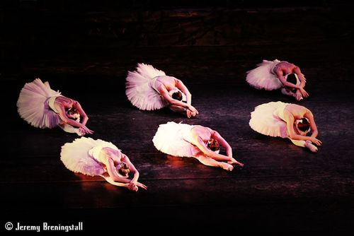 Russianimperialballetswanlake10