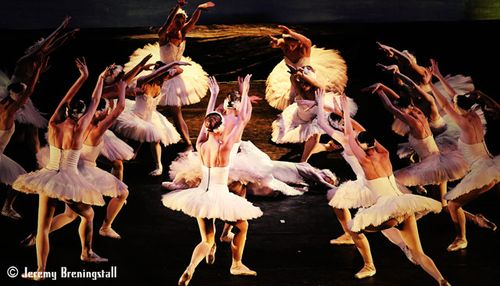 Russianimperialballetswanlake13