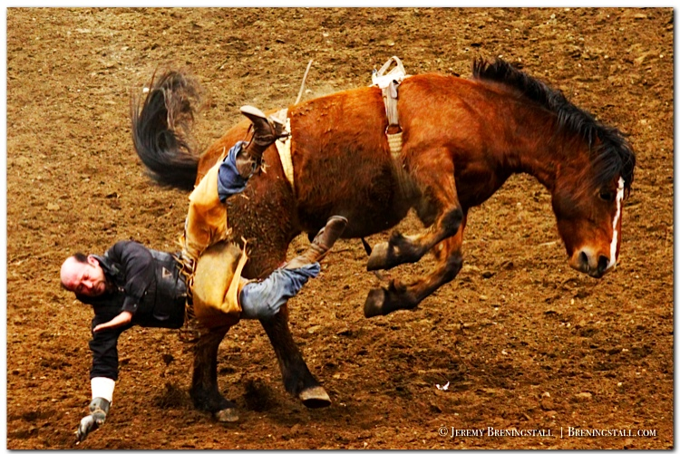 Worlds-Toughest-Rodeo-Photo
